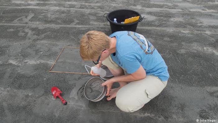 Cientista coleta amostras de poluição marinha