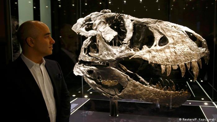 Deutschland Dino Ausstellung im Naturkundemuseum Berlin Niels Nielsen