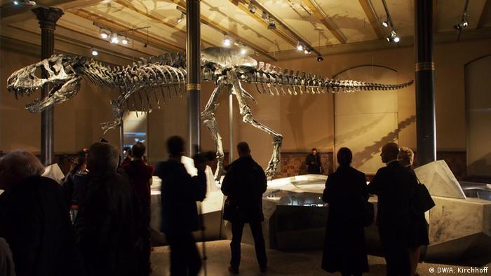 Тираннозавр в Берлине