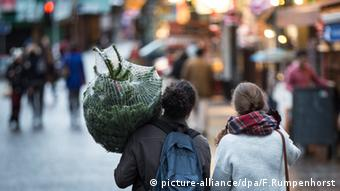 People carrying a Christmas tree