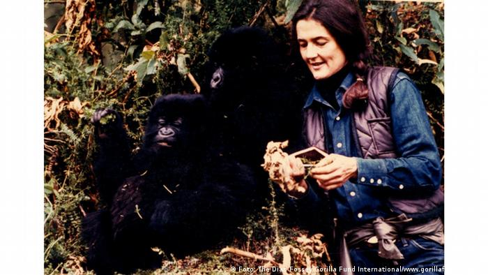 Great apes researcher Dian Fossey
