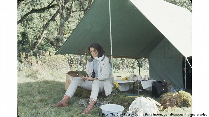 US researcher Dian Fossey Photo: The Dian Fossey Gorilla Fund International/www.gorillafund.org/dpa