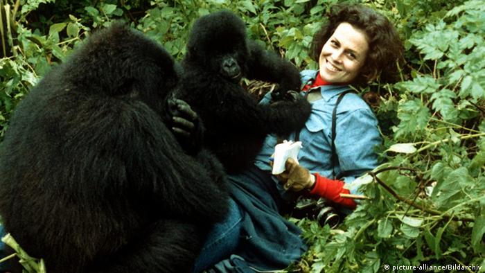 Sigourney Weaver in Gorillas in the mist Photo: picture-alliance/Bildarchiv