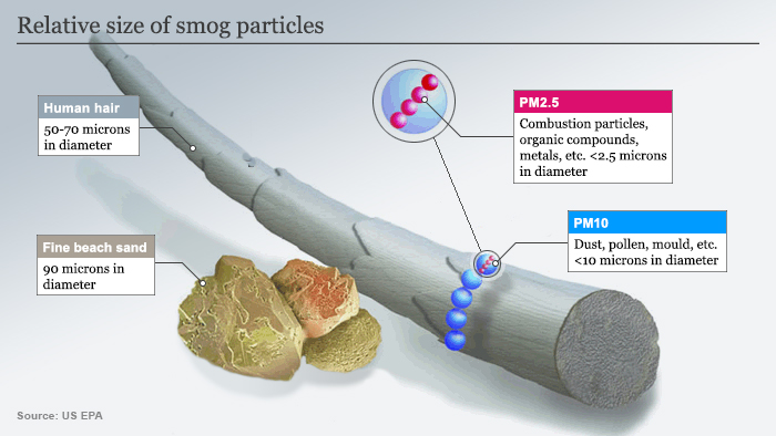 Graphic on smog particulates size