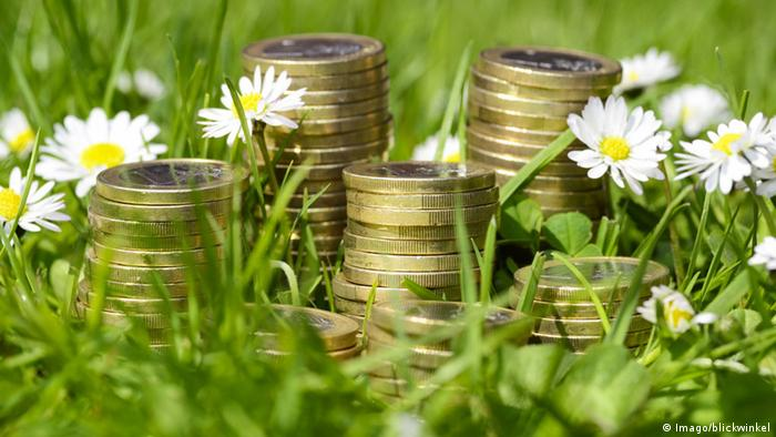 Euro coins in grass
