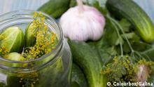 Ernährung - Gurken und Knoblauch