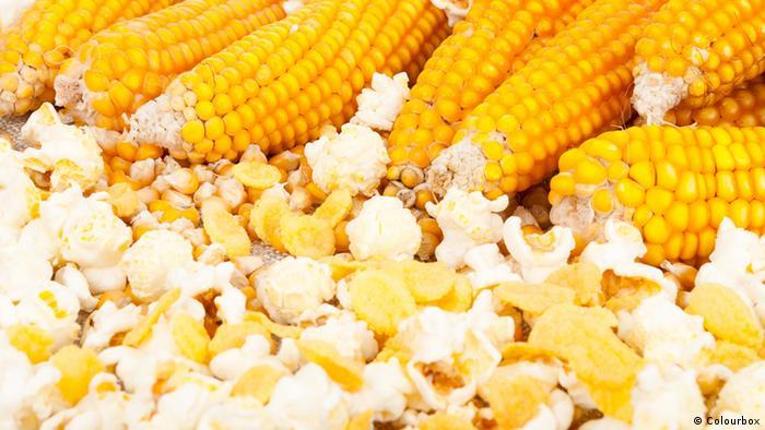 Ernährung - Mais und Popcorn
