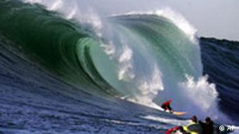 BdT BIG Wave Contest in Kalifornien