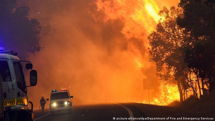 Australien Waldbrand Feuer Yarloop