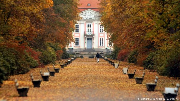 Deutschland Herbst im Tierpark Friedrichsfelde in Berlin