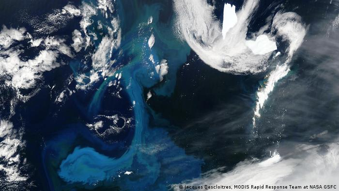 Eisberge im South Atlantic Ocean , Perspektive aus dem Weltall (Foto: Jacques Descloitres, MODIS Rapid Response Team at NASA GSFC).