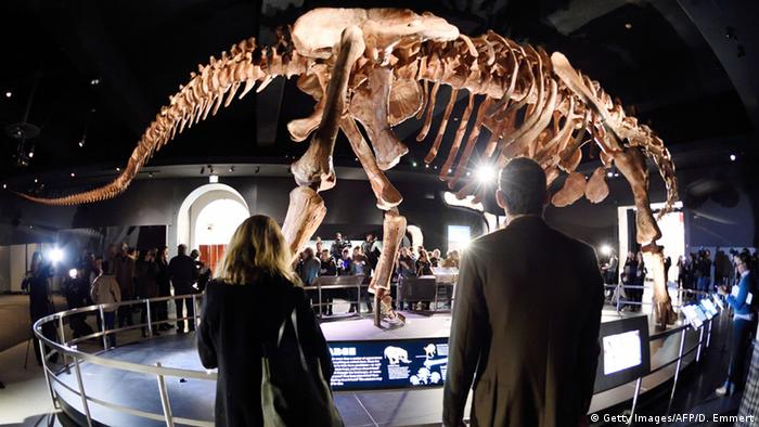 American Museum of Natural History - Dinosaurier aus Argentinien