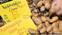 Wochenmarkt Heidekartoffeln