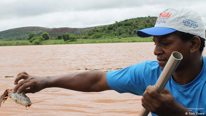 Fisherman on the River Rio Doce finds dead fish, Mariana mining disaster Brazil © Sam Cowie