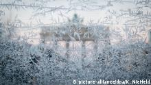 Eiskristalle Brandenburger Tor