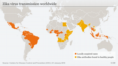 Infografik Zika Virus weltweit Englisch