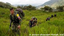In this Jan. 6, 2016 photo, members of the 36th Front of the Revolutionary Armed Forces of Colombia or FARC, trek to a new camp in Antioquia state, in the northwest Andes of Colombia. Big guerrilla camps are a thing of the past, the rebels now move in smaller groups. The 36th Front is comprised of 22 rank and file fighters, 4 commanders and 2 dogs. (AP Photo/Rodrigo Abd) picture-alliance/AP Photo/R. Abd