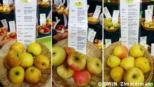 Bildkombo Äpfel auf der Grünen Woche 2016 in Berlin