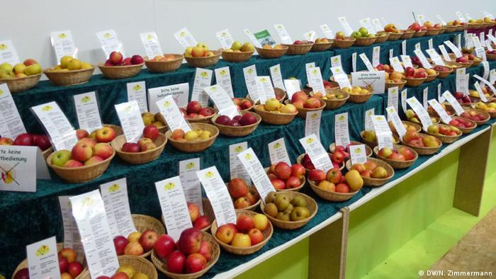 Apple varieties displayed at Green Week 2016 in Berlin (Photo: DW/N. Zimmermann)
