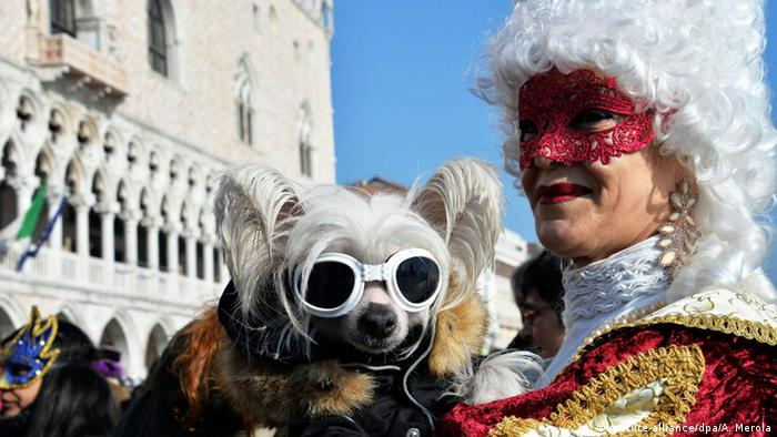 Venice carnival (picture-alliance/dpa)