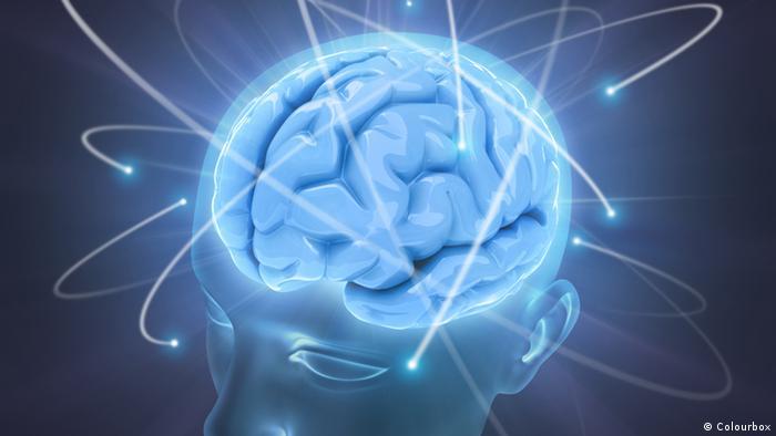 Die Stärke des Gehirns
