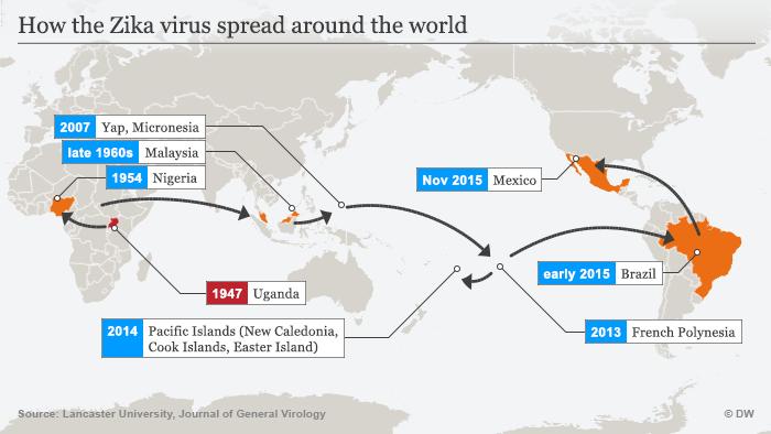 Infografik Die Ausbreitung des Zika-Virus Englisch
