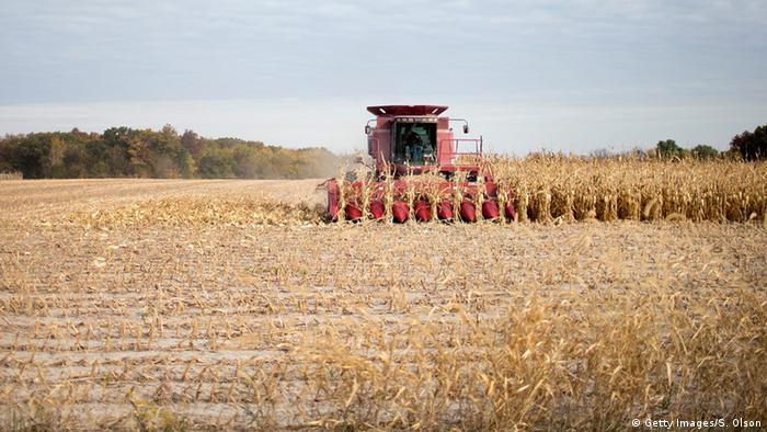 Китай збирається припинити закупівлю сільськогосподарської продукції США