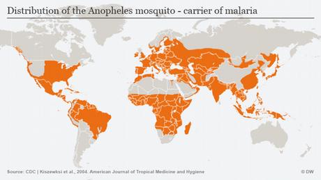 Infografik Anopheles-Mücke Verbreitung Englisch