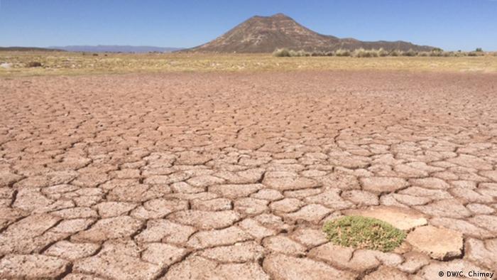 BOLIVIA: Confirman desaparici�n de lago boliviano