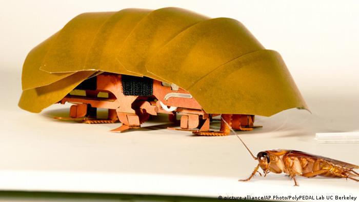 mit winzigen robotern nach versch tteten suchen alle multimedialen inhalte der deutschen. Black Bedroom Furniture Sets. Home Design Ideas