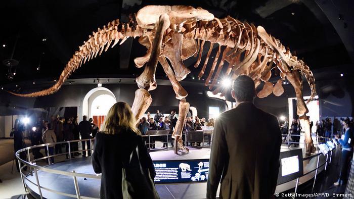 USA Sonderausstellung Titanosaurus