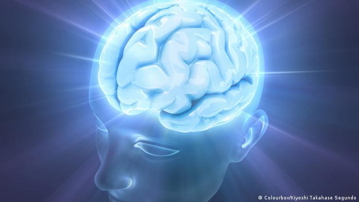 e4729ccfff512 تعرف على حقائق مهمة ومثيرة عن الدماغ
