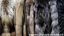 Verschiedene Pelzmäntel hängen am 20.11.2013 in Frankfurt am Main (Hessen) in einem Pelzfachgeschäft. Großmutters klassischer Pelzmantel ist out. Das Pelzgeschäft boomt dennoch wie eh und je - trotz Warnungen der Tierschützer. Doch nicht nur die Ware, auch der Kundenkreis hat sich gewandelt. Foto: Daniel Reinhardt/dpa (zu dpa-Korr «Pelze - Neuer Schick und alter Streit» vom 09.12.2013) +++ (C) picture-alliance/dpa/D. Reinhardt