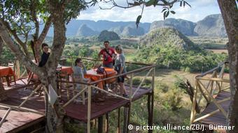 Kuba Tourismus Baumhaus