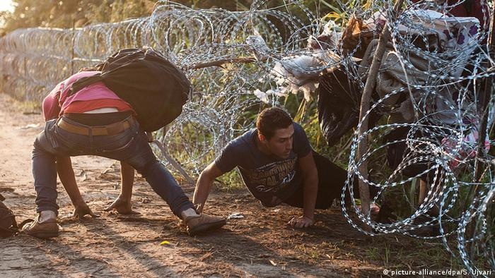 People crawling under razor-wire at the border of Serbia and Hungary