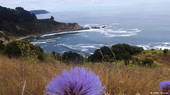 Chile Quiriquina Island