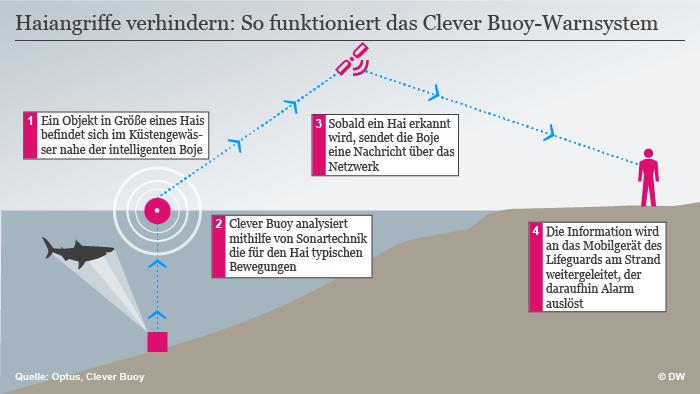 Infografik Haiangriffe verhindern mit intelligenter Boje (Grafik: DW).