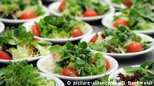 Deutschland Stuttgart Teller mit gemischten Salaten