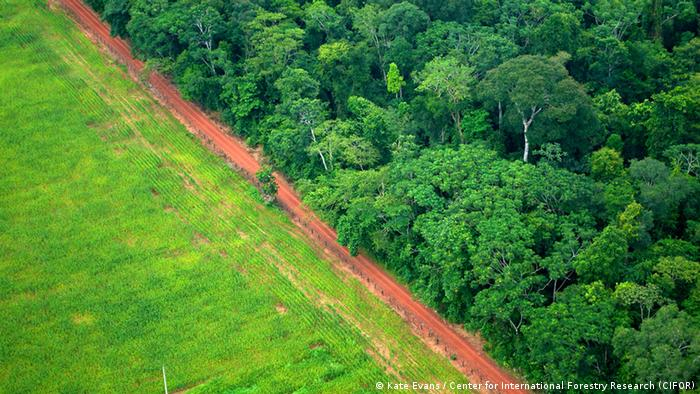 An aerial shot shows the contrast between forest and agricultural landscapes near Rio Branco, Acre, Brazil (Kate Evans / Center for International Forestry Research (CIFOR))