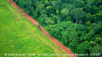 Los traficantes de drogas se han visto empujados hacia las zonas alejadas del Amazonas, lo que tiene consecuencias para la selva.