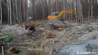 Через нелегальний видобуток бурштину в Україні уже пошкоджено 3,5 тисячі гектарів лісу