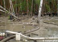 Видобуток бурштину на Поліссі досі законодавчо не врегульований