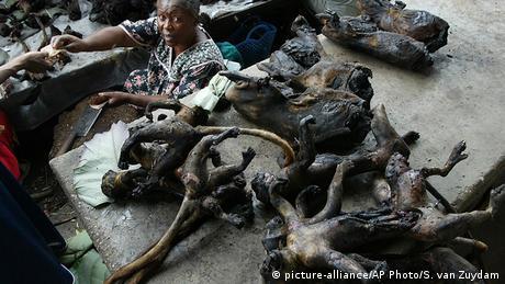 Kongo Kisangani Bushmeat auf dem Markt (picture-alliance/AP Photo/S. van Zuydam)