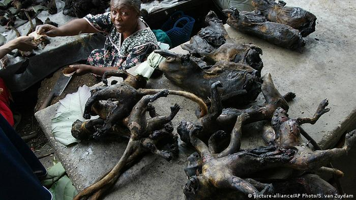 Kongo Kisangani Bushmeat auf dem Markt