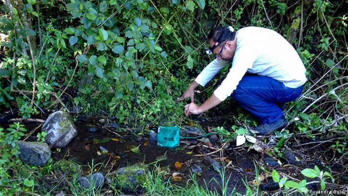 Andrés Merino-Viteri , director of the Balsa de los Sapos amphibian Research facility in Qito, Ecuador (c) Ruxandra Guidi