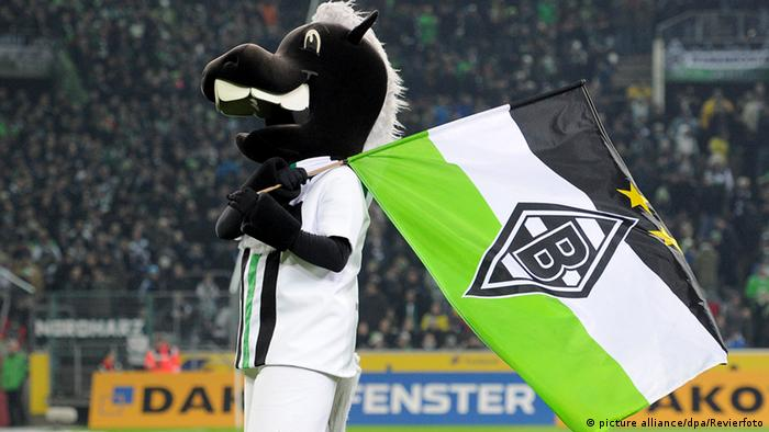 O potro Jünter, do Mönchengladbach