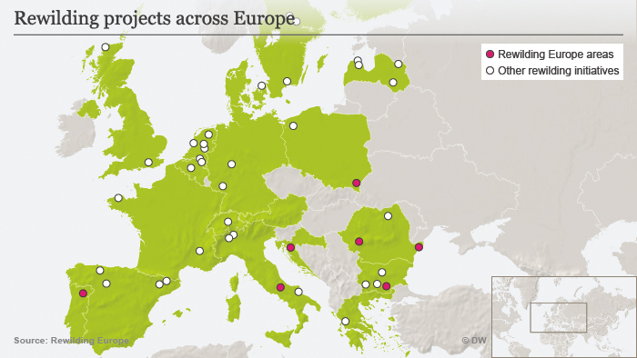 Map of the rewilding projects across Europe
