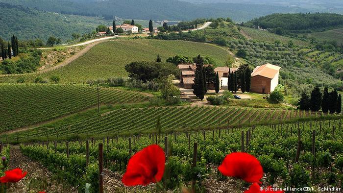 Italien Montepulciano Toskana Weingut