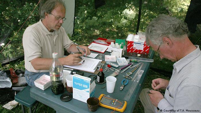 Studie Timothy Mousseau Biologische Effekte von Nuklearkatastophen