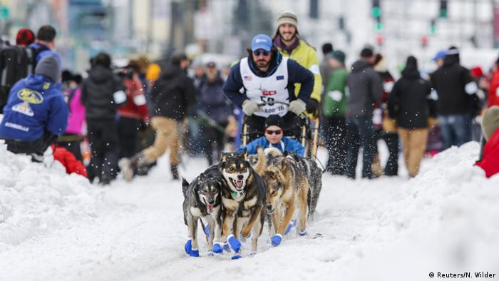 Musher and dog sled team